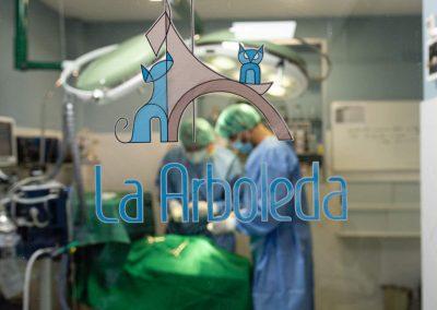 Veterinario_elpuertodesantamaria (20)
